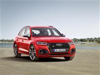 2017 Audi SQ5 image.