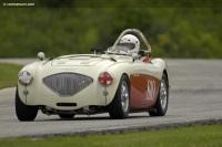 1954 Austin-Healey 100-4 BN1 image.