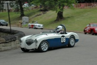 1955 Austin-Healey 100M image.