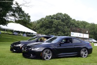 2013 BMW M6 image.