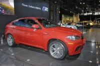 2010 BMW X6 M image.