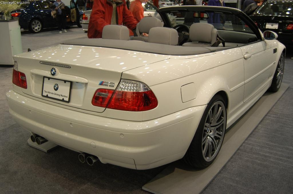 Auction results and data for 2004 BMW 3Series  conceptcarzcom