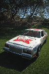 1983 Buick DiGard NASCAR pictures and wallpaper