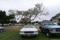 1976 Chevrolet Caprice Classic image.