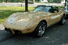 1977 Chevrolet Corvette C3 pictures and wallpaper