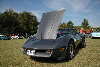 1981 Chevrolet Corvette C3 pictures and wallpaper