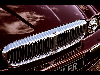 2006 Daimler Super Eight thumbnail image