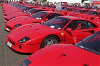 1987 Ferrari F40 image.