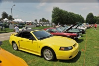 2001 Ford Mustang image.