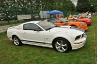 2008 Ford Mustang image.