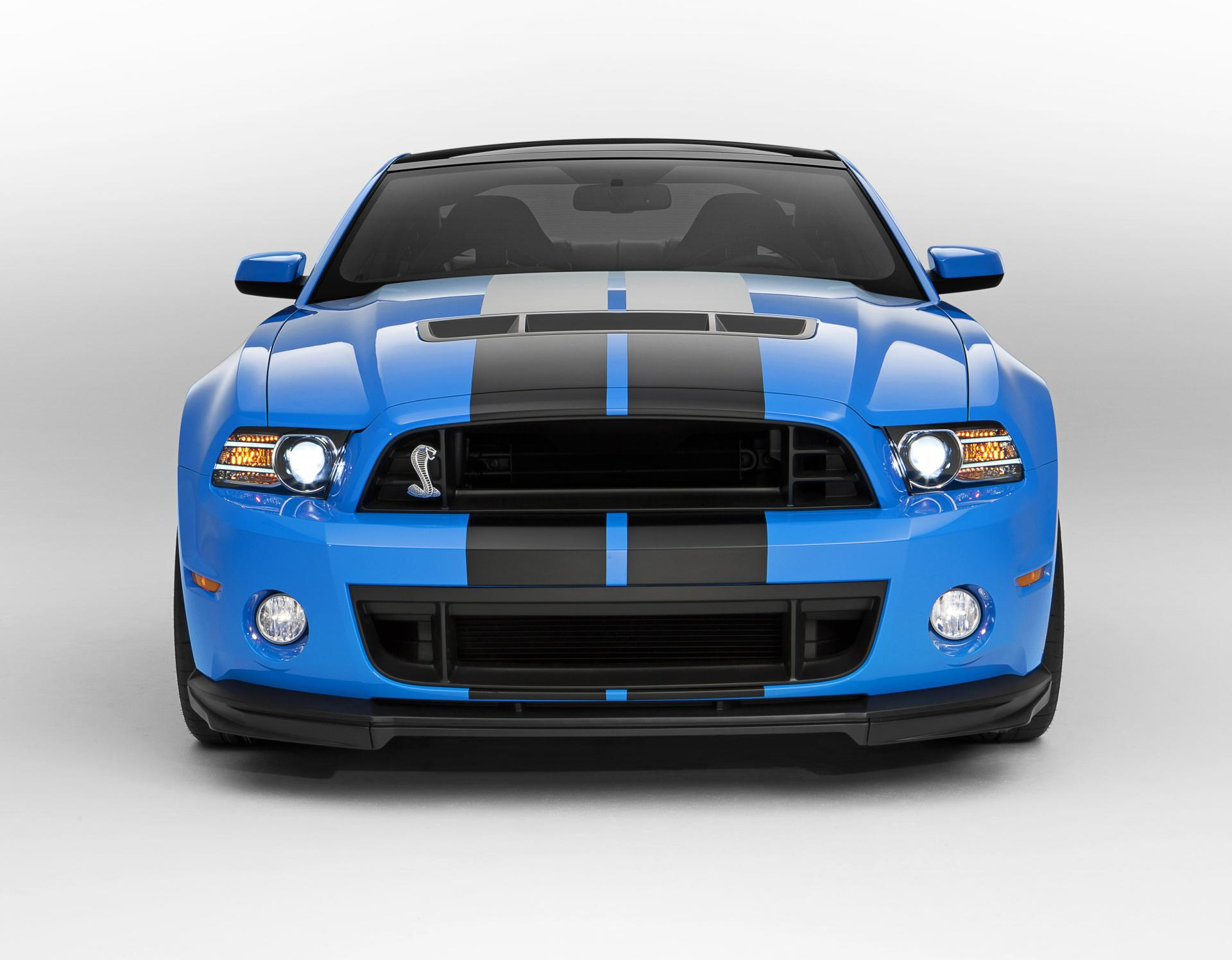 2013 Shelby Mustang GT500 Image