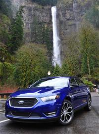 2013 Ford Taurus SHO image.