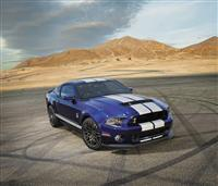 2014 Shelby Mustang GT500 image.