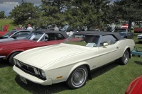 1973 Ford Mustang image.