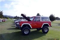 1974 Ford Bronco image.