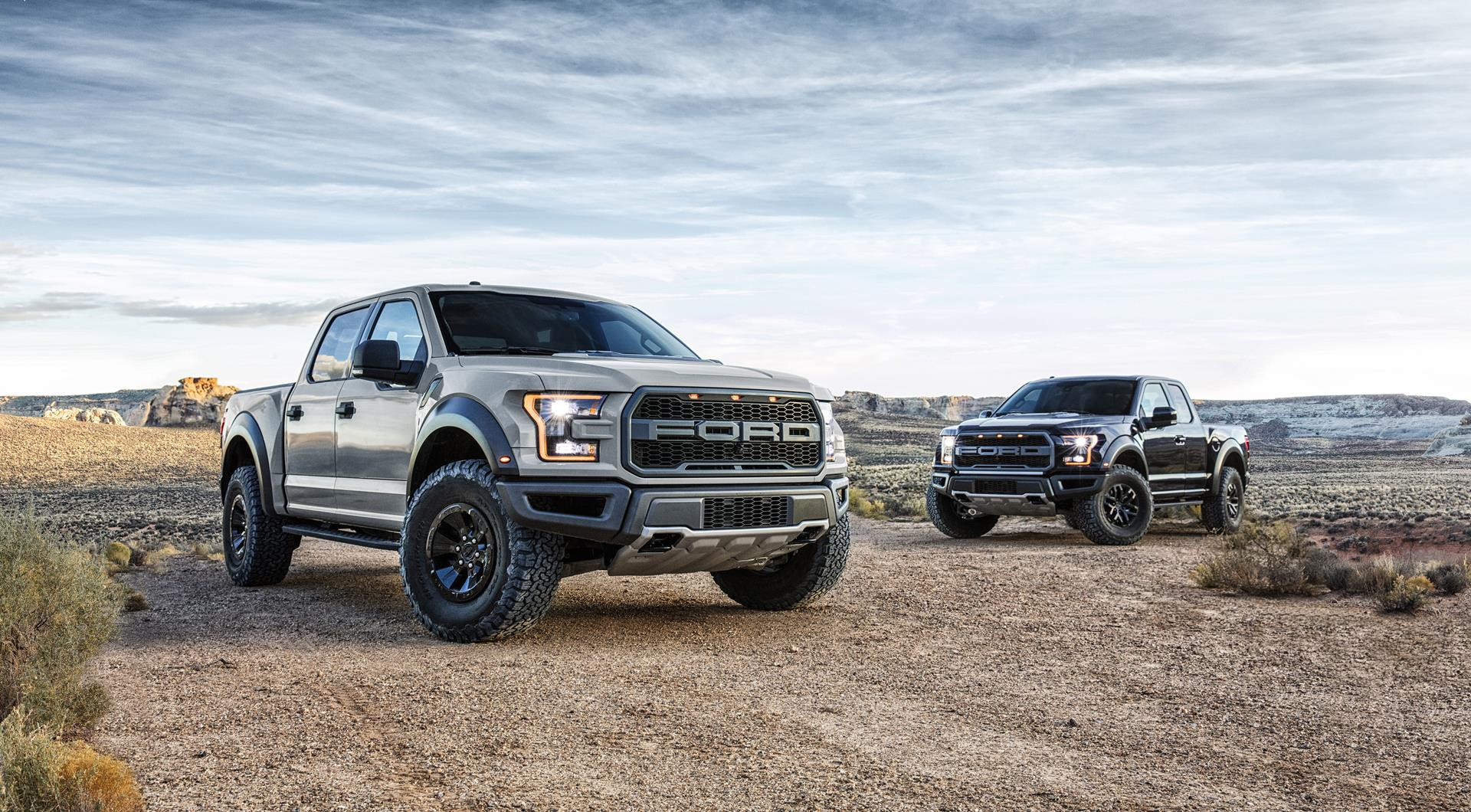 2016 ford f 150 raptor image. Black Bedroom Furniture Sets. Home Design Ideas
