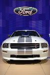 2007 Shelby Mustang GT pictures and wallpaper