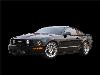 2006 Livernois Motorsports Mustang GT image.