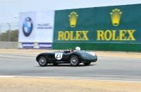 1953 Jaguar C-Type