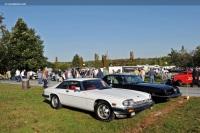 1984 Jaguar XJ-S image.