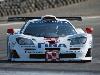 1995 McLaren F1 GTR pictures and wallpaper