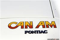 1977 Pontiac LeMans image.