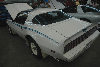 1980 Pontiac Firebird pictures and wallpaper