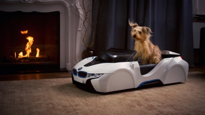 BMW Launches dDrive Dog Basket To Recreate The Thrill Of The Open Road At Home