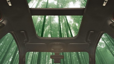 What's Super Strong, Fast Growing, And Potentially Part Of Your Next Car? Bamboo!
