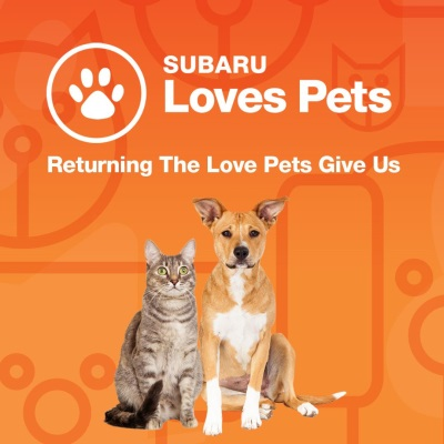 Subaru Of America Aims To Improve Lives Of Furry Friends With 'Subaru Loves Pets' Initiative In October