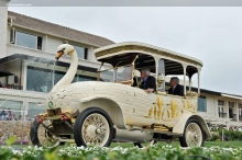 Brooke 25/30 Swan Car