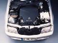 1998 Mercedes-Benz C43 image.