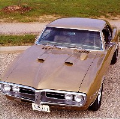 1967 Pontiac Firebird pictures and wallpaper