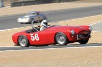 1956 AC Aceca-Bristol