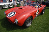 Chassis information for Shelby Cobra 289