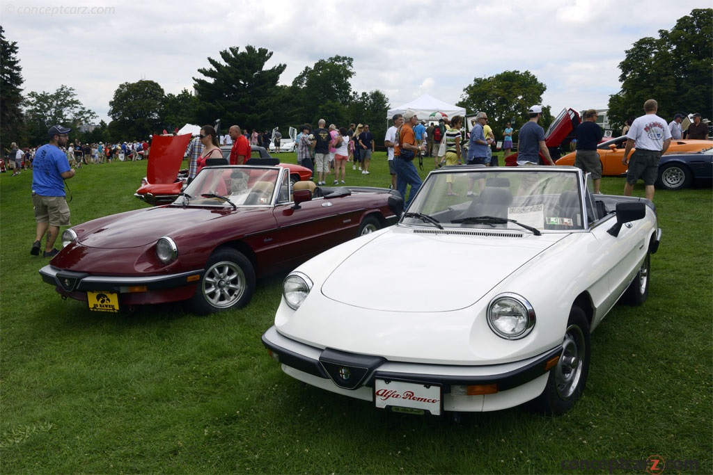 Auction Results And Sales Data For Alfa Romeo Spider Graduate - Alfa romeo spider graduate for sale