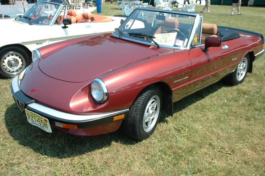 Alfa Spider By Le