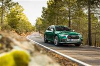 Popular 2019 Audi SQ5 TDI Wallpaper