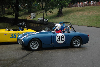Chassis information for Austin-Healey Sprite
