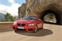 2013 BMW 2 Series Coupe image.