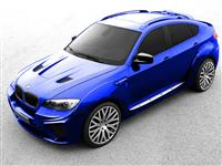 BMW X6 Wide Body