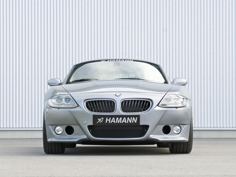 2007 Hamann Z4 M Pictures, History, Value, Research, News ...