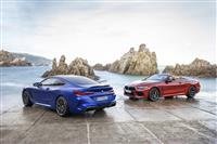 Popular 2019 BMW M8 Competition Wallpaper