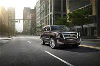 2015 Cadillac Escalade Platinum image.