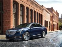 Cadillac XTS Monthly Vehicle Sales