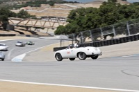 5B: 1947-55 Sports Racing and GT