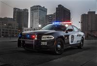 2015 Dodge Charger Pursuit image.