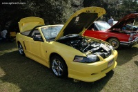 2001 Roush Mustang image.