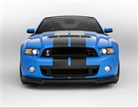2013 Shelby Mustang GT500 image.