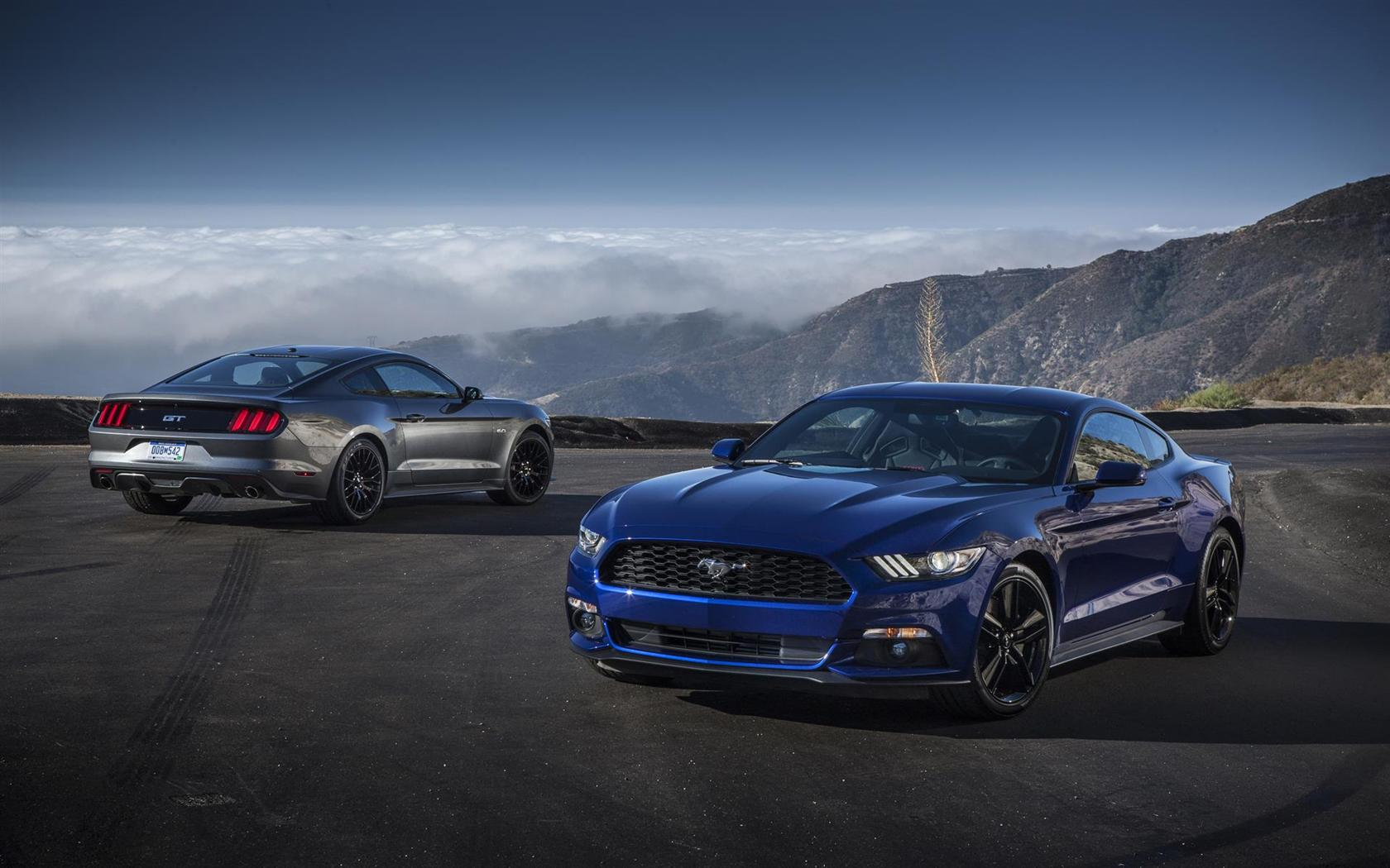 Mustang Concept >> 2015 Ford Mustang Image. Photo 49 of 68